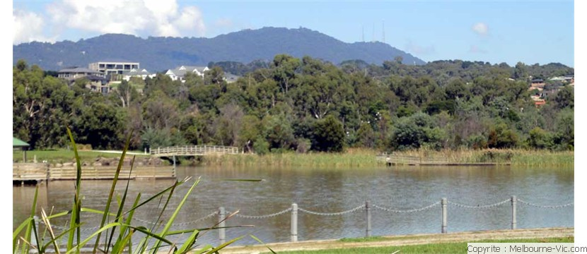 Dandenongs from Lilydale Lake
