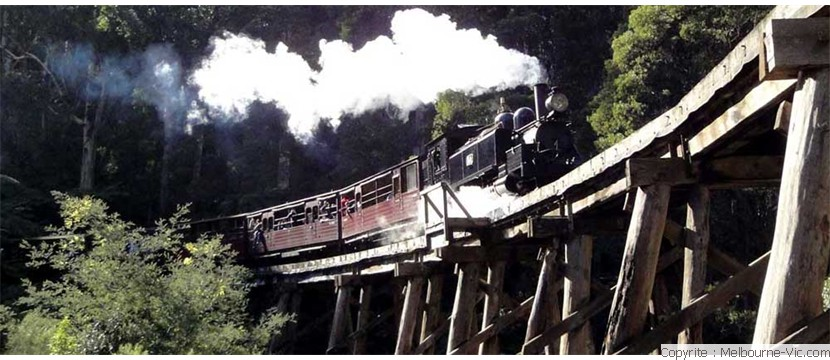 PuffingBilly train-Dandenongs