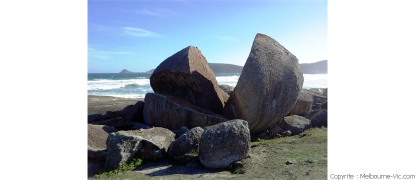 Giant Rock-Wilsons Prom