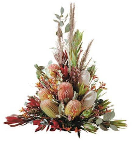 Banksia Burdetti